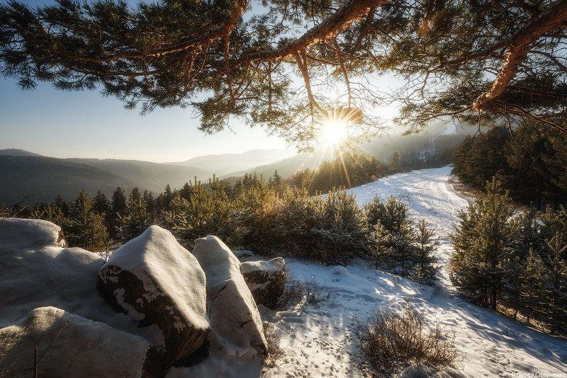 пейзаж, зима, закат, вечер, горы, Алтай, Белокуриха, скалы, сосна, лес Зимний закатphoto preview