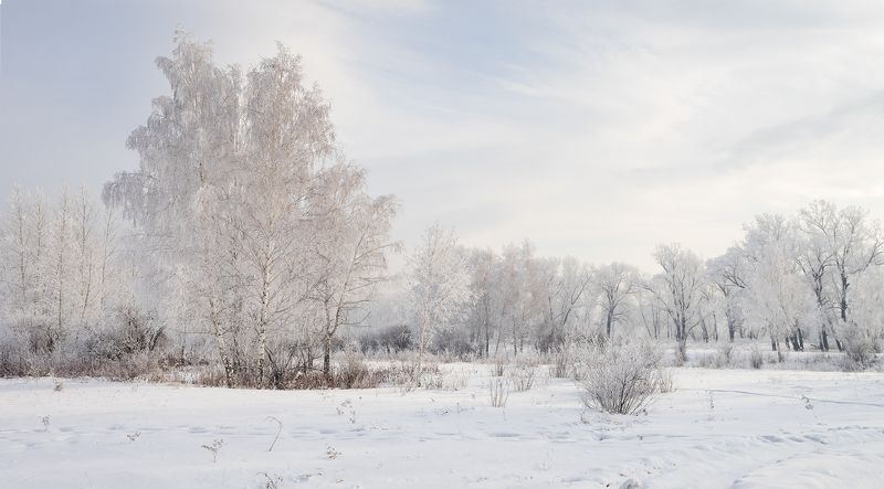 ...Зимний этюд...2photo preview