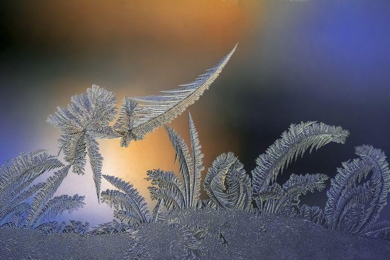 Зимние сказки в каждом окнеphoto preview