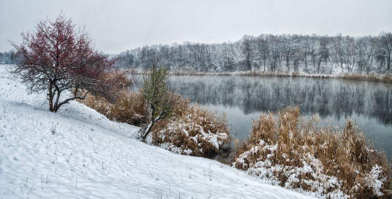 Зимнее безмолвиеphoto preview