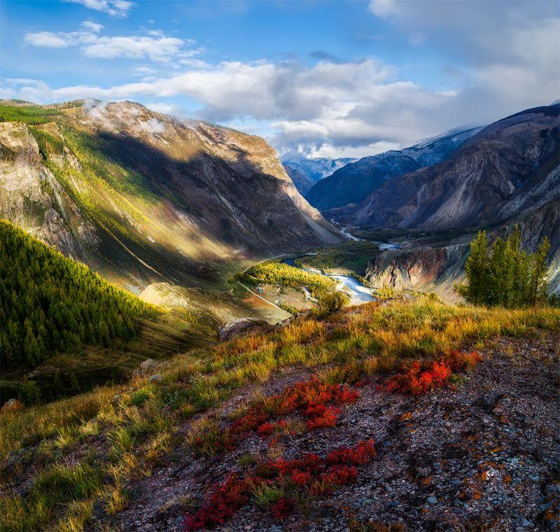 природа, пейзаж, сибирь, алтай, горы, осень, каньон, долина, чулышман Долина Чулышманphoto preview