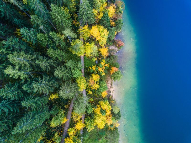 австрия, квадрокоптер, дрон, осень, озеро, austria, aerial, drone, autumn, forest, deep, green, yellow Осень в Австрииphoto preview