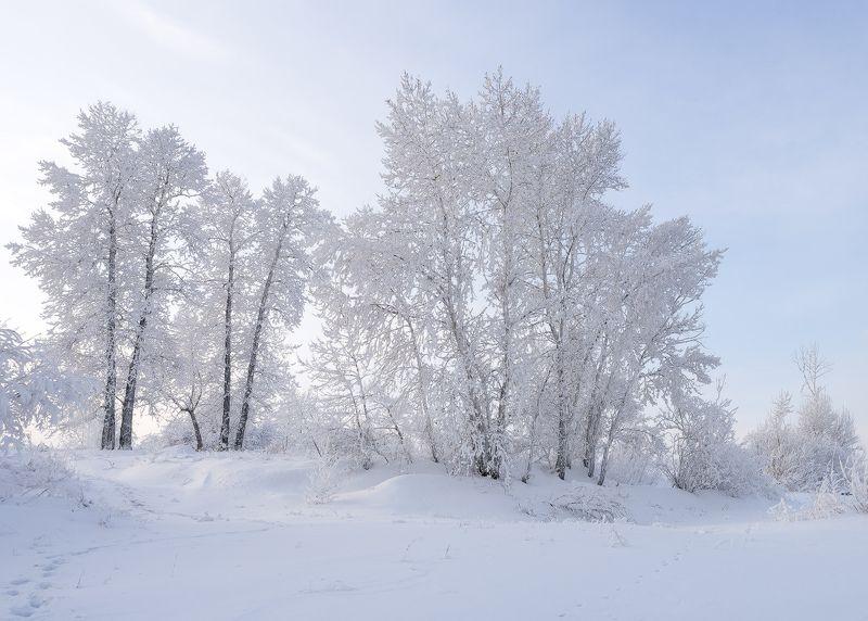 ...Зимний этюд...4photo preview