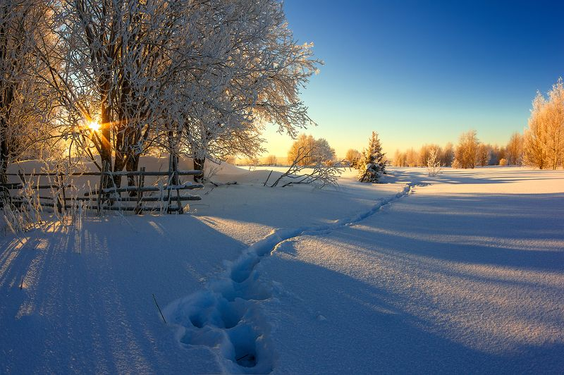 снег иней зима забор следы закат про зимушку-зиму, зимний вечер и легкий морозец )photo preview