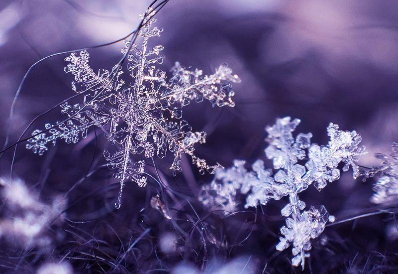 Снежинкиphoto preview