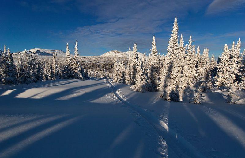 зима, снег, пихты, склоны, горные лыжи, сноуборд, гора, зелёная, шерегеш, горная шория, сибирь Здравствуй, Шерегеш! Или не всё коту масленица...)photo preview