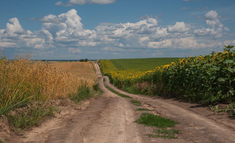 моя Українаphoto preview