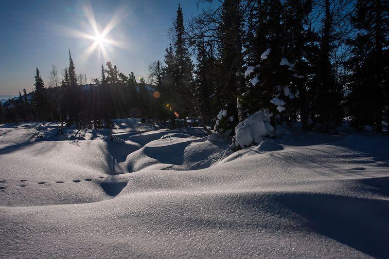 зима, солнце, снег, сугробы, шерегеш, горная шория, сибирь Pro снег...photo preview
