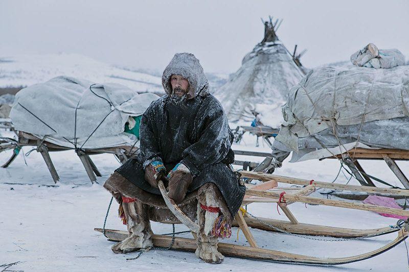 ямал, полярный урал, олени, оленеводы, ненцы Пётр Иванович Тайбериphoto preview