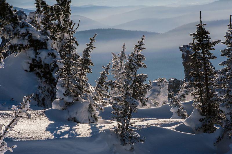 зима, солнце, снег, сугробы, пихты, кедры, шерегеш, горная шория, сибирь С праздником Рождества!photo preview