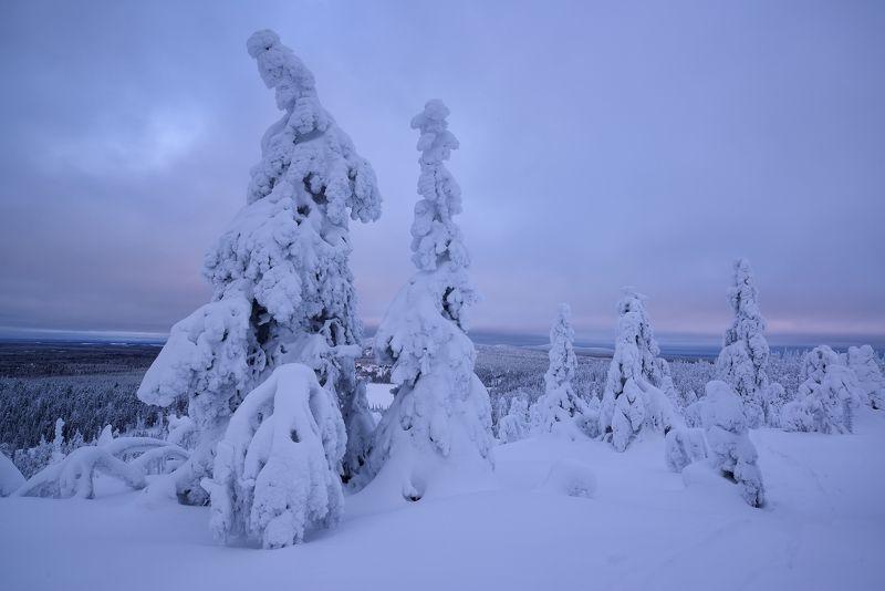 Зима. Финляндияphoto preview