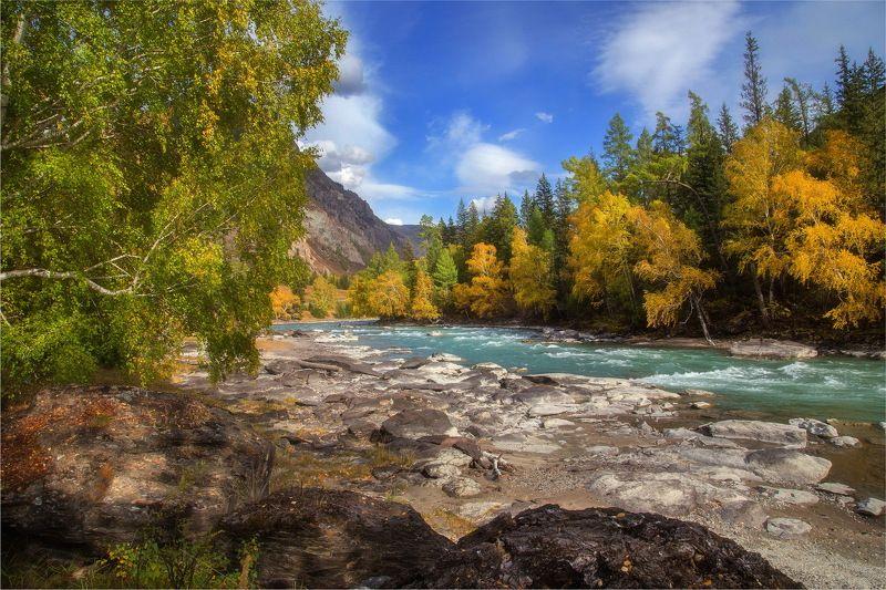 алтай, природа, путешествие, осень Привал на берегу Катуни! Алтайphoto preview