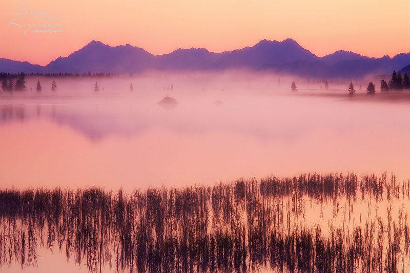 утро, туман, озеро Утро на озере Момонтай.photo preview