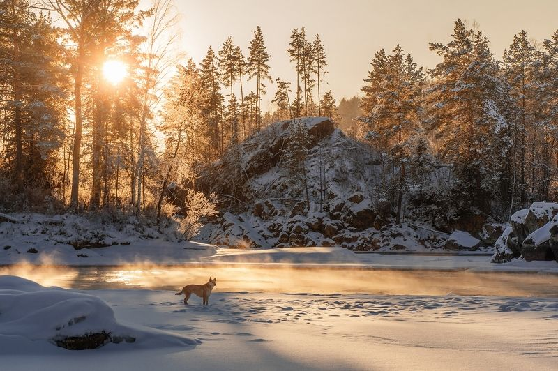 Закат в Рыбалке)photo preview