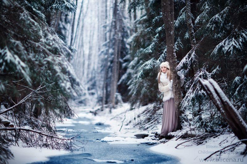 Сказочный лес.photo preview