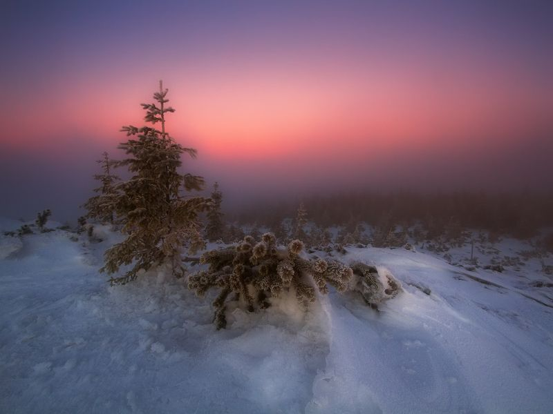 landscape,canon,winter Winter Light IIphoto preview