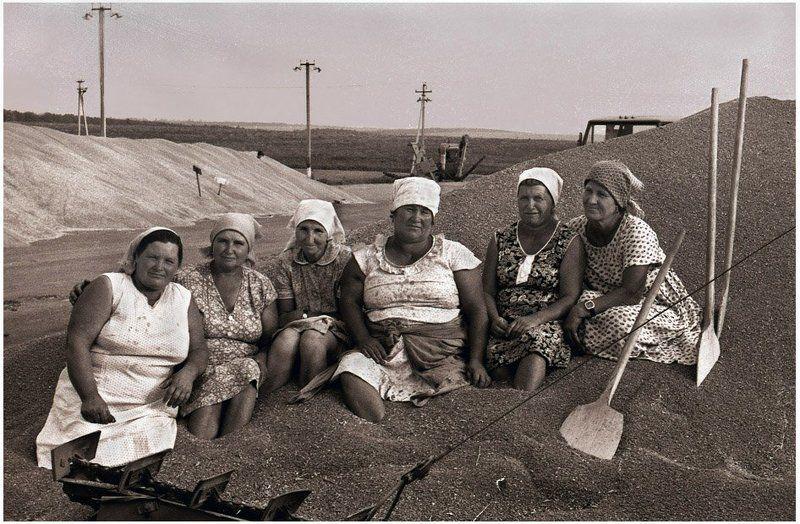село, хлеб, крестьяне Хлеборобушкиphoto preview