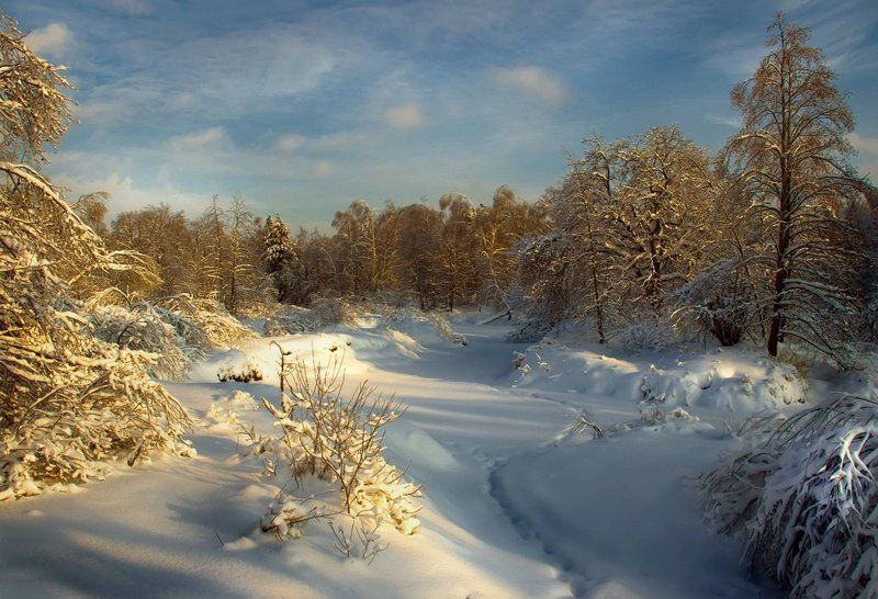 Зимняя тропкаphoto preview