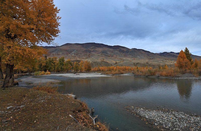 осенний пейзаж, осень, природа, алтай, горы, река, берег Уж небо осенью дышало...photo preview