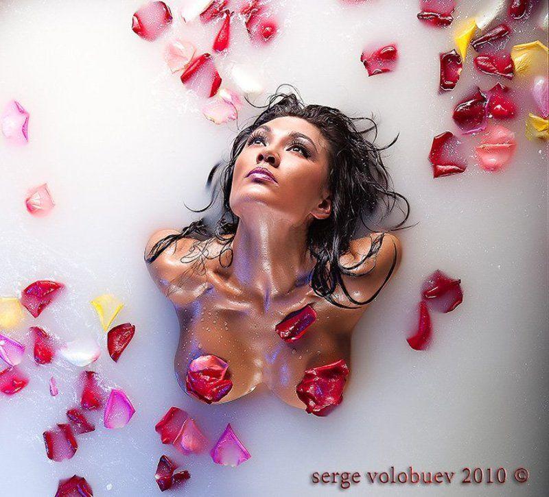 девушка, розы, лепестки, молоко, купание,ню, портрет, зыко ;) китайская розаphoto preview