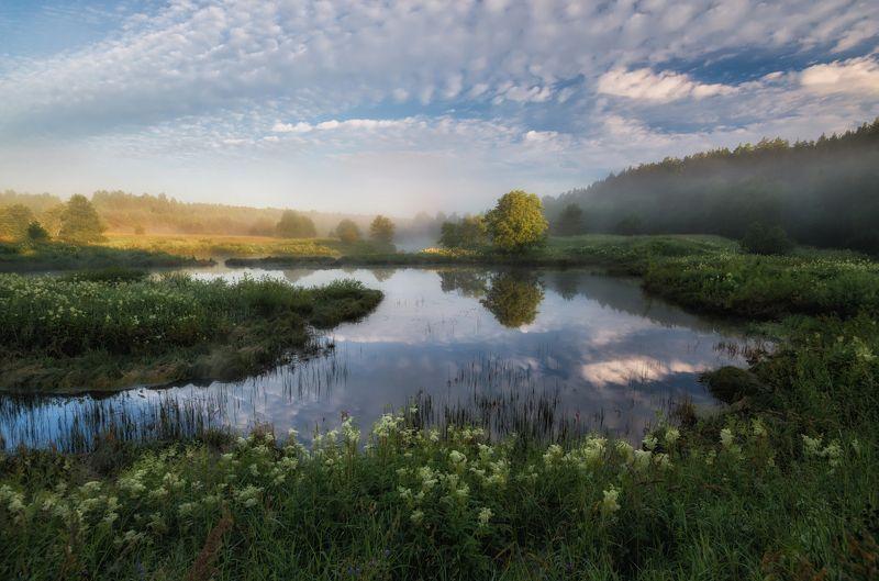 ярославская область, нерль Летом на Нерли...photo preview