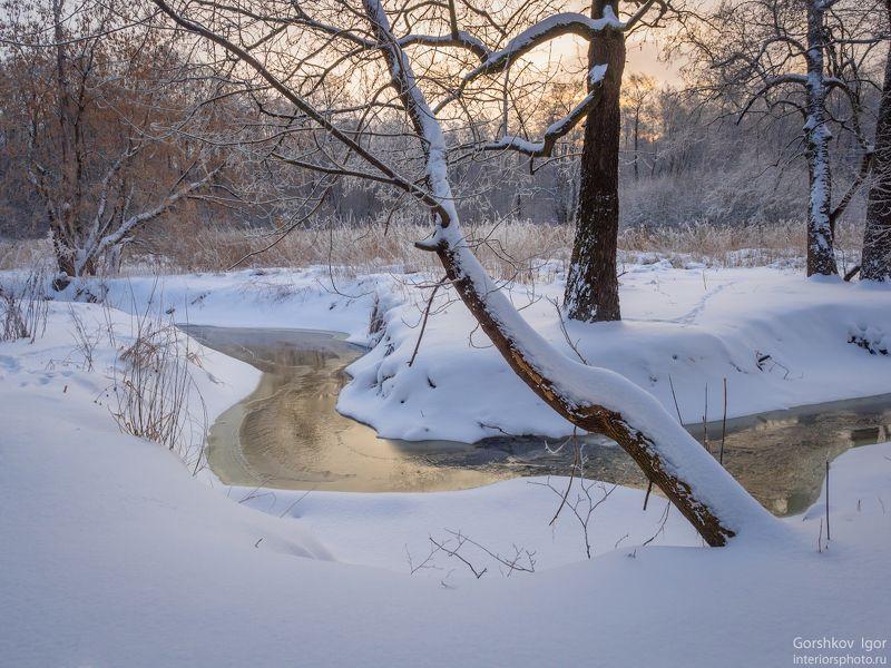 зима,утро,мороз,пейзаж,река,измайловский,парк,москва,природа,лес, Морозное зимнее утроphoto preview