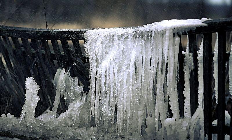 оледеневший забор зима холод лед забор помолейко pomoleyko fence cold ice frozen Оледеневший заборphoto preview