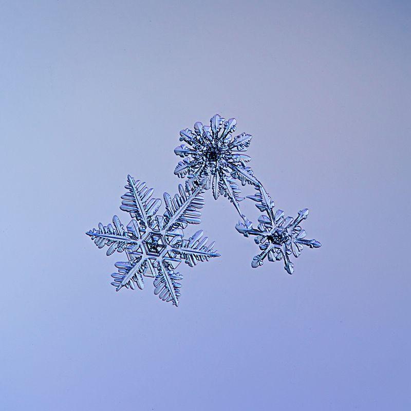 снежинка, снежинки, макро, зима, кристалл, природа Узоры зимыphoto preview