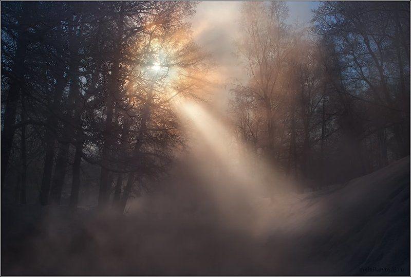 Луч света в царстве туманаphoto preview