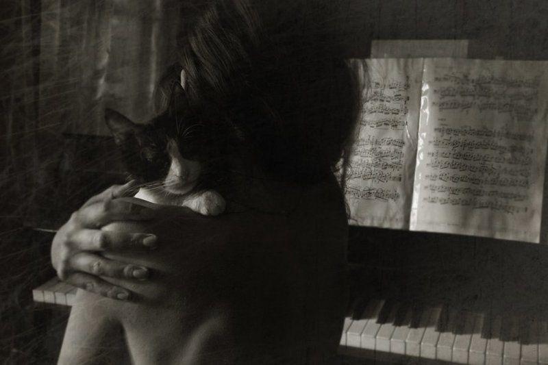 виолончель, девушка, ноты, , музыка История одной любви...photo preview