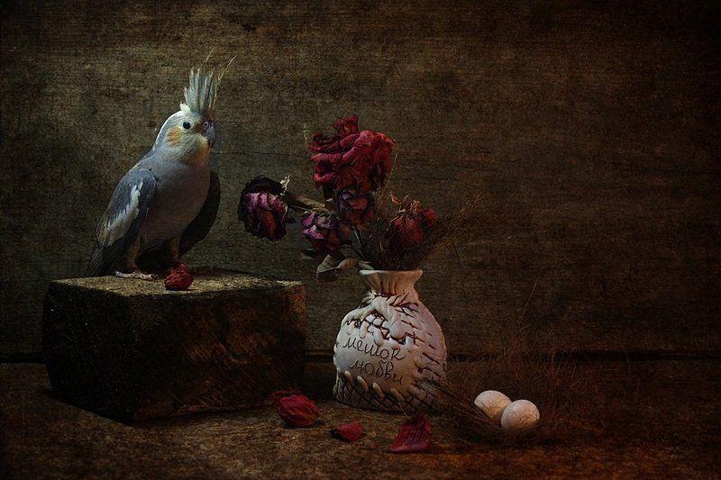 .... твои завяли розы...photo preview