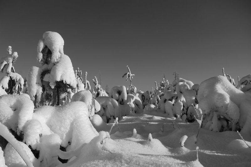 снег Одеялоphoto preview