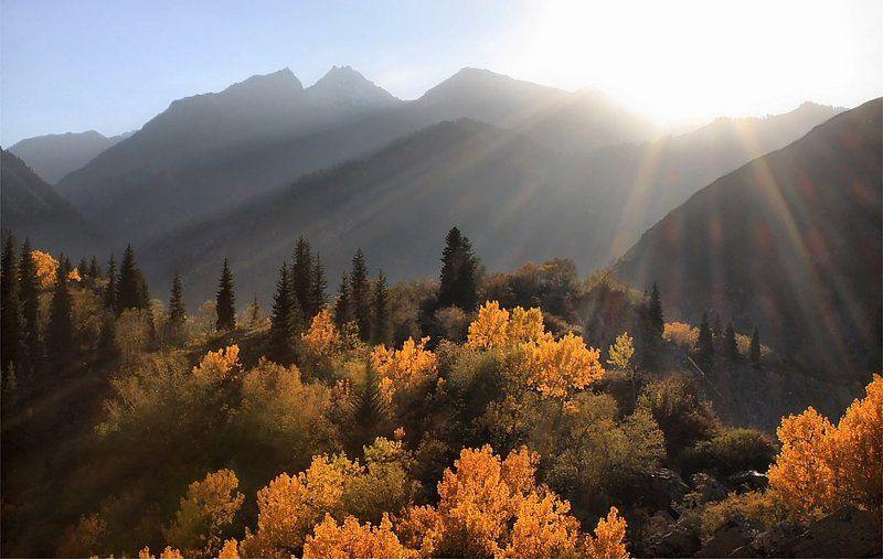 лучи,горы,осень в последних лучахphoto preview
