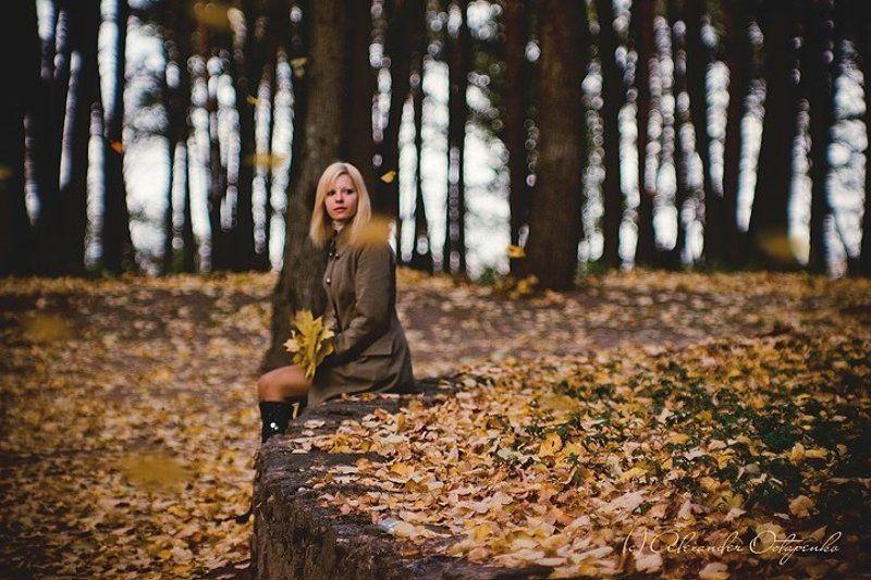 Тишина опавших листьевphoto preview