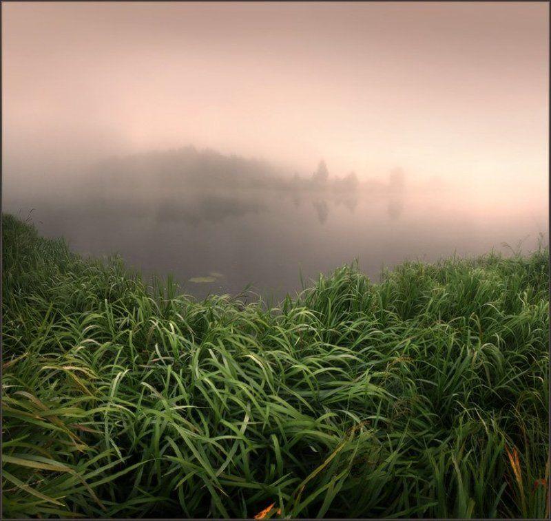 река, утро В тишине речной... 2photo preview