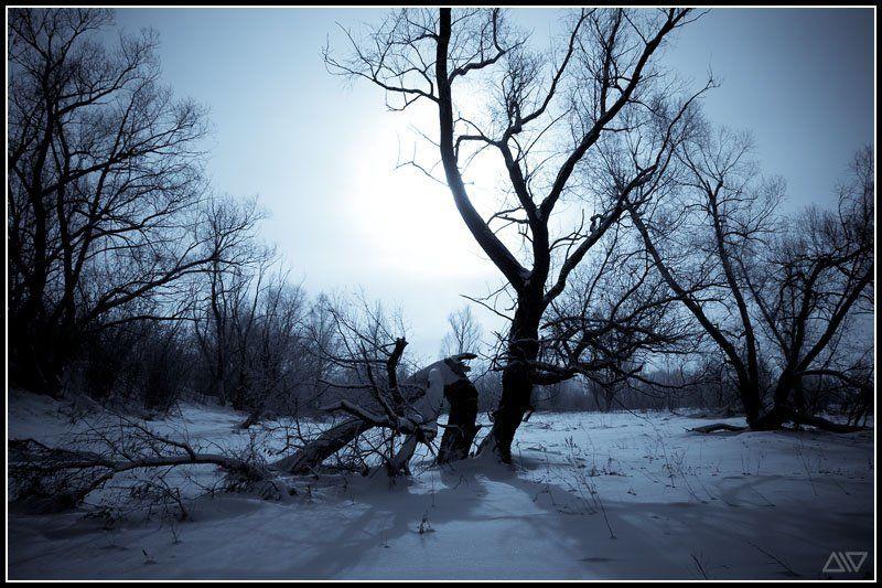 январь, зима Холодный январьphoto preview