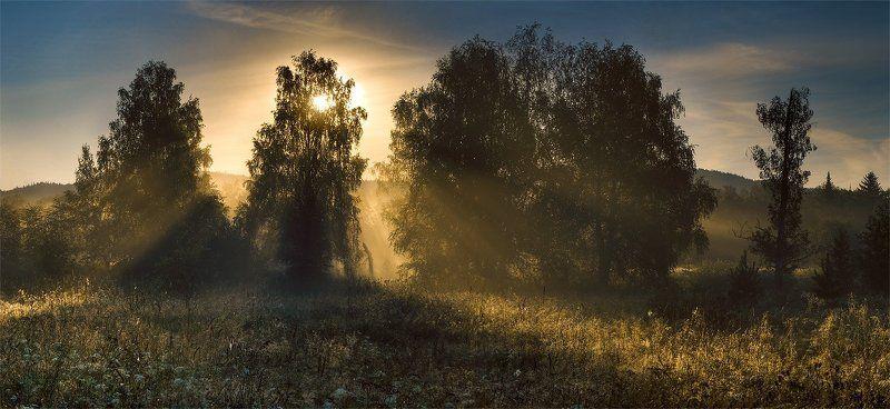 утро Утренний светphoto preview