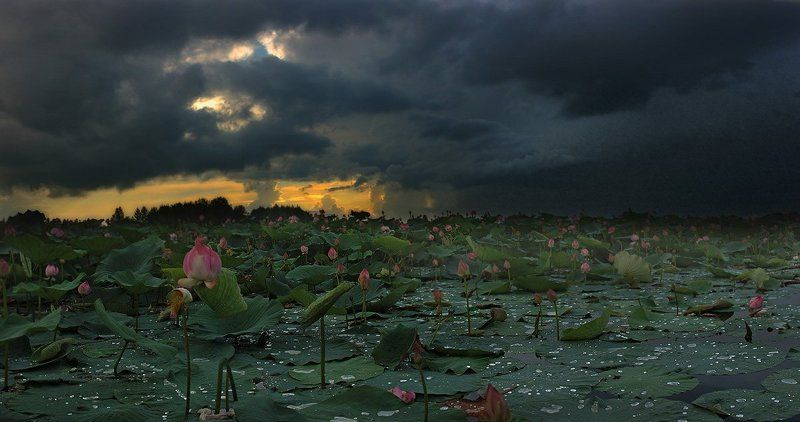грозовой август (2)photo preview