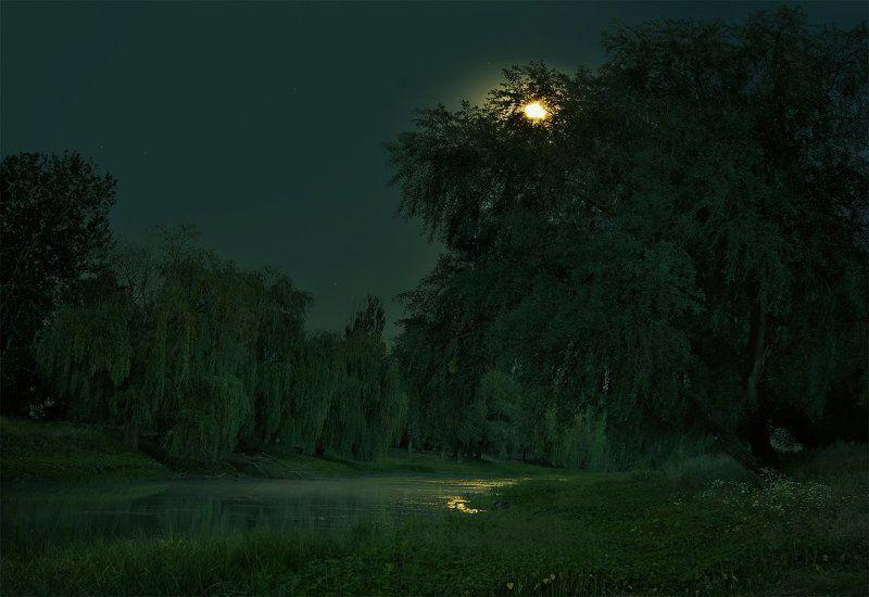 Тиха украинская ночьphoto preview