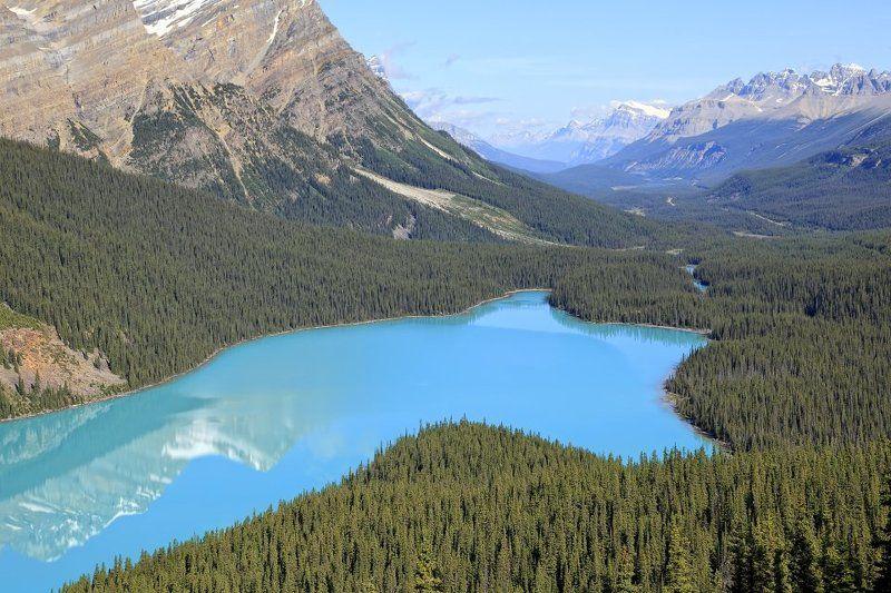 отражения, озеро, парк, банф, канада Peyto lakephoto preview