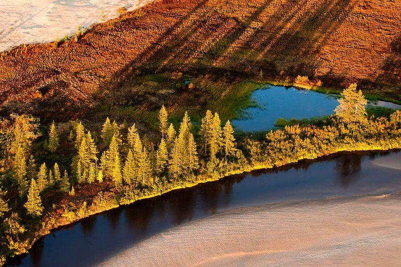 север,   тундра,   осень ,  аэросьемка сентябрьские краски тундры#2photo preview