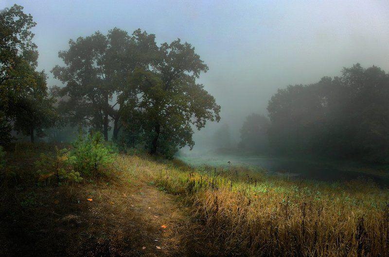 туман, осень, речка Утро на речкеphoto preview