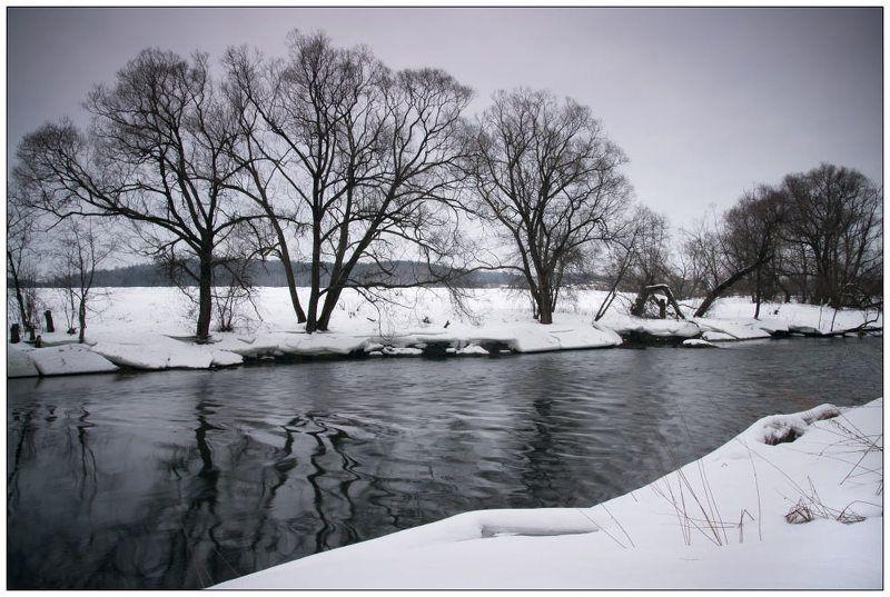 истра, подмосковье Монохромная зимаphoto preview