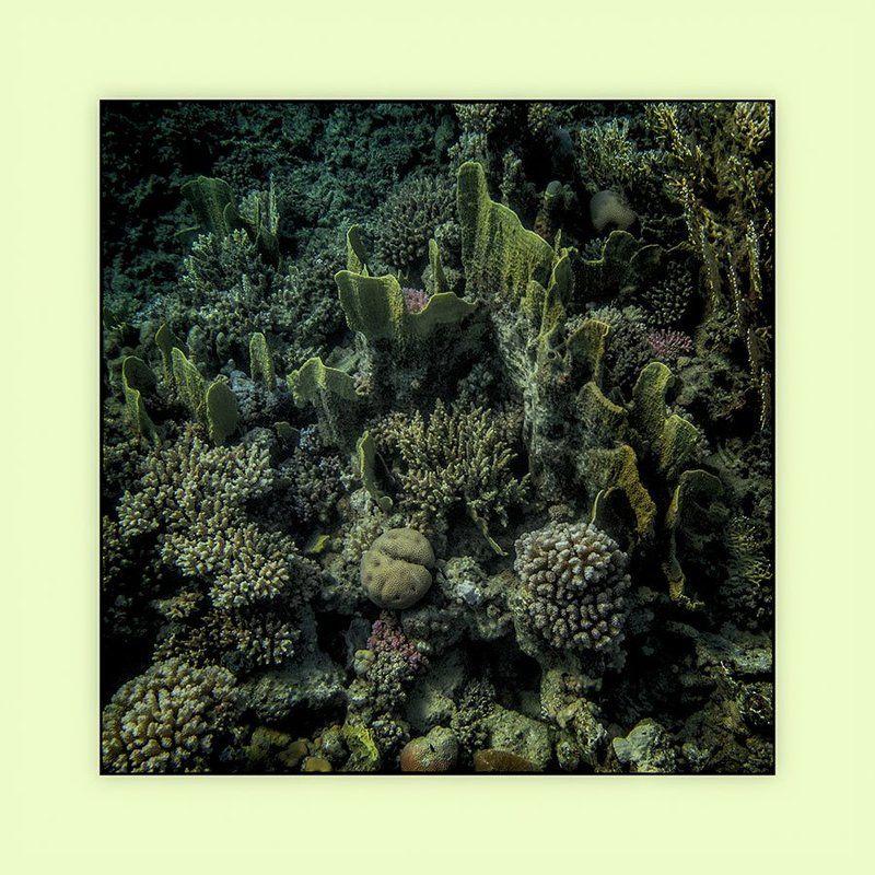 Фактуры подводного мираphoto preview