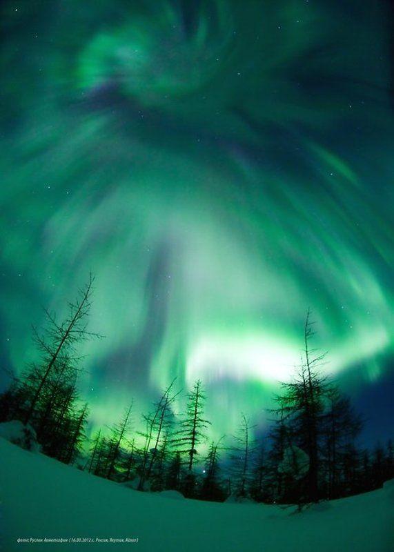 пейзаж, природа, россия, север, якутия, зима, время года, ночь, космос, северное сияние, полярное сияние, тайга, фото, руслан ахметсафин,эмоции, восторг, зелёны Северное Сияние в Якутии !photo preview