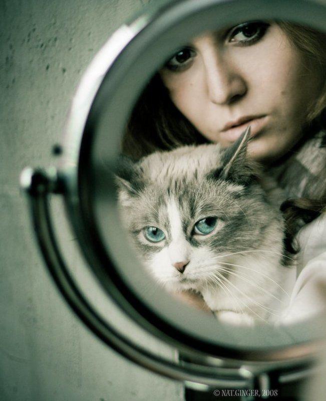 портрет Про кошку и красивую девушку )photo preview
