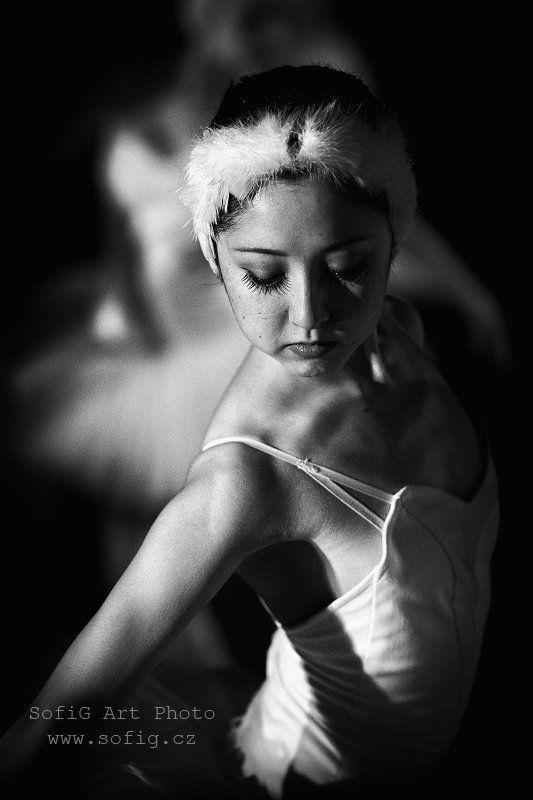 ballet, balet, tanec, ballerina, swan lake, sofig ...photo preview