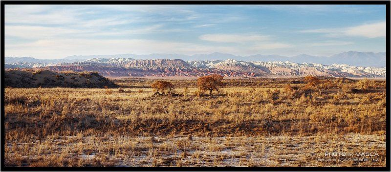 казахстан, фотосафари, алматы, kazakhstan, photo, safari Панорамкиphoto preview