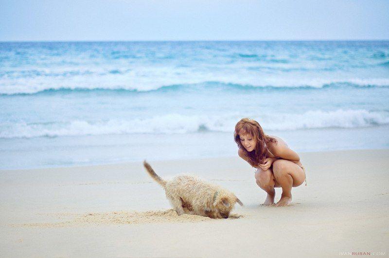 девушка, собака, море, тайланд Thai Dreamsphoto preview
