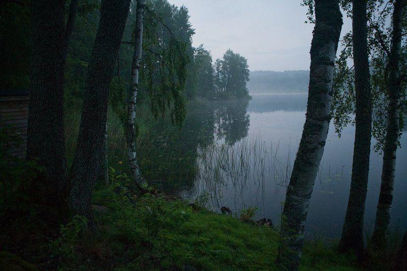 тишина Тишинаphoto preview